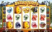 Bonus Bears Progressive Slot - new from Playtech